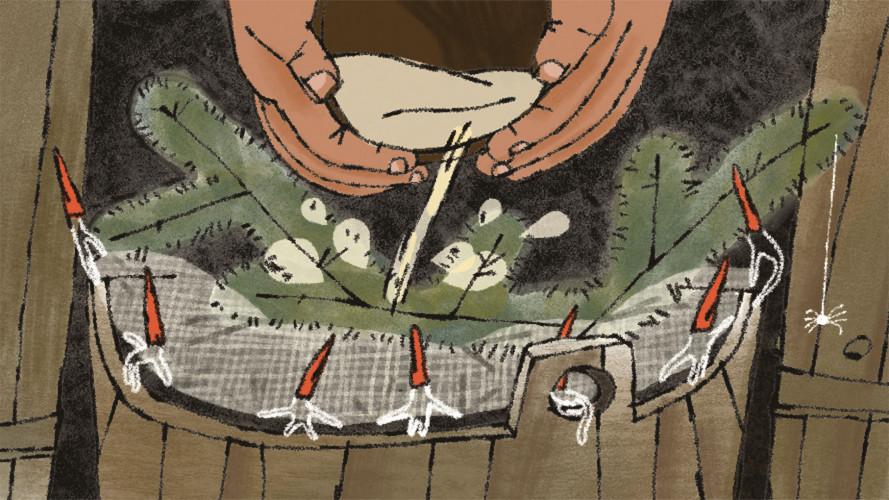 Коротко про гуцульську овечу бриндзю
